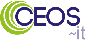 CEOS IT logo